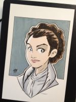 Princess Leia in Hoth Gear Headshot by DaveBardin