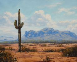 Arizona Desert by artsaus