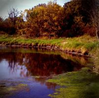 Fall on the DuPage River I by marisamudd
