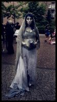 Corpse bride by Skycode