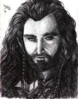 Thorin Oakenshield by ArcticHorizont