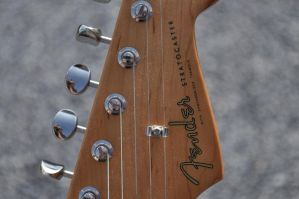 Fender Stratocaster Details 5 by Law-Concept