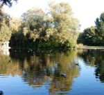 Duck Lake by passion-flower3