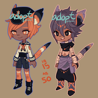 Adopts : wet and dry cats (closed) by jeotabet