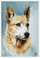 Classic dog portrait by ramdens