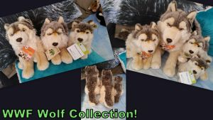 WWF wolf Collection! by Vesperwolfy87
