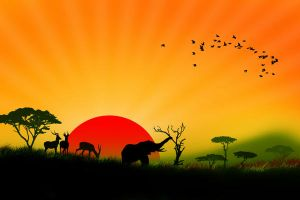 africa by adypetrisor