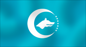 Turkic Union flag by AY-Deezy