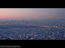 Eiffel Panorama - West Side by Encephalartos