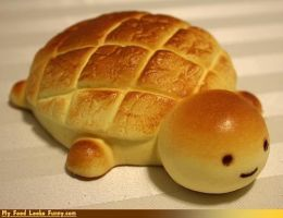 Turtle Bread by ArtGirl827