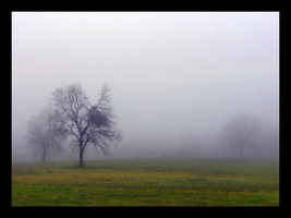 A Foggy Day in Downingtown by myoverkills