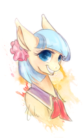 + Coco Pommel + by Akita48