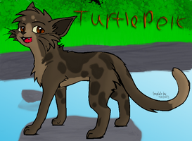 Turtlepelt by AdogTheCool