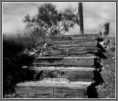 Wood stair by quevedo3