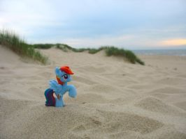 Rainbow Dash at the beach by felix330