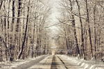 Winter Panoramic #3: Copper Winter Road by floating-angel