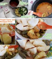 vegan Curry and Malay ketupat Rice by Doll1988