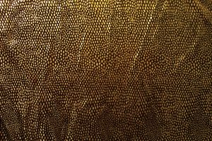Great dotted on black fabric by paintresseye