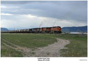 Loaded Grain Train by hunter1828