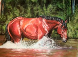 29. River horse by Mrfour1