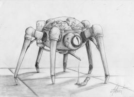 A strange spider by Asthenot