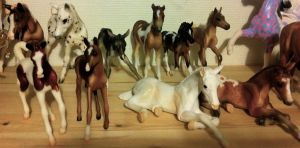 Some Breyer Foals by dyb