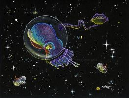 Bobtail Squid in Space by MegLyman