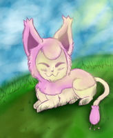 skitty by honey-bee