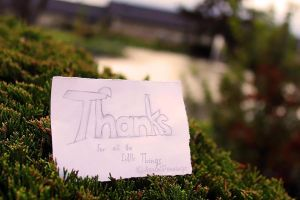 Thank you. by AaronPennings