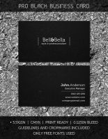 Pro Black Business Card by Raincutter