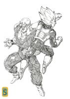 Vegeta vs piccolo by bloodsplach
