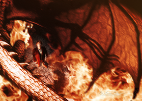 Bilbo and Smaug by AnnaProvidence