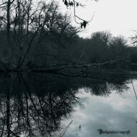 REFLECTION III by CountessBloody