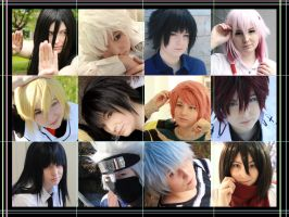 Cosplay's of 2013 by Naricie