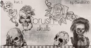 Skull Brushes Part 1 By Canelita309 by SriitaDeWatt