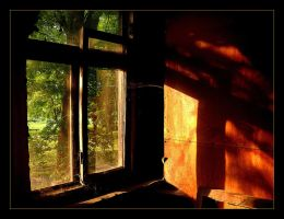 Window In Old House (Remastered) by skarzynscy