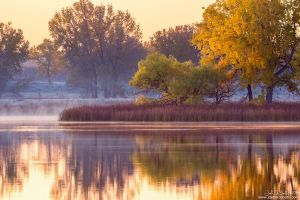 A Foggy Morning In Fall by kkart