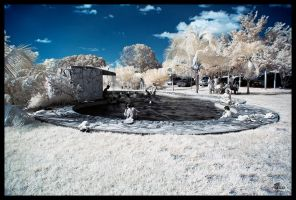 The Pool in IR by Jase036