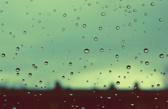 On a rainy day. by FrancesHolly