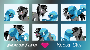 MLP OC Expressions : Amazon Flash and Reala Sky by outlaw4rc