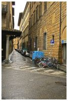 firenze due by thirteenx