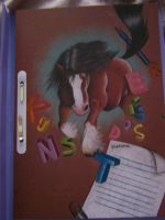 shire horse for ckv by cuteart13