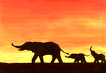 elephants at sunset by grim1978