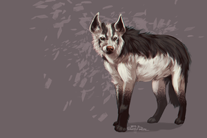 Mightyena speedpaint by Annasko