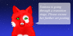 Please Excuse by Tontora
