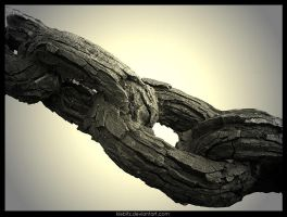 Strong And Frangible by kiebitz