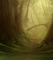 Alacrity: Borneo Forest BG by mrXylax