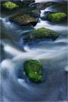 Green stones by Aphantopus