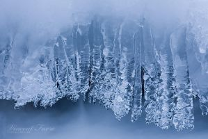Ice garland... by vincentfavre
