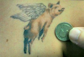 when pigs fly.... by chozen954